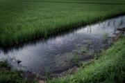 水のいろいろな機能・利用・効果を考えよう!~日本大学 水資源環境工学研究室の紹介~