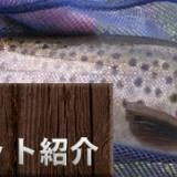 2003年熊ニュースの多かった、清里 大門川の写真