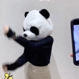 『【動画あり】エッッッ!!??この早川聖来、パンダより美脚に目がいってしまうんだがwwwwww【乃木坂46】』の画像