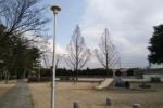 小春日和を感じちゃう。どなたかお忘れですよ!~松塚公園の遊歩道に、ピンクのストール忘れてますよ!~
