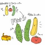 『【ひとコマ漫画】近所のスーパーと野菜の話』の画像