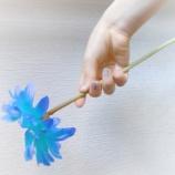 『[イコラブ] 大場花菜 はなまるきぶん『ジェルとおねがいしたいこと』 (6/4)【はなちゃん】』の画像