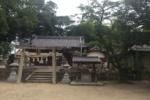奇跡的!?『若宮神社のサクラの木』はそれでも生きている!