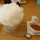 『日光天然氷のかき氷が食べられるFucu cafeに行ってきたぞ! - 天竜区二俣町』の画像