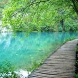 『バスクリンのような湖』の画像