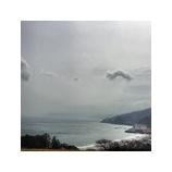 『真鶴』の画像