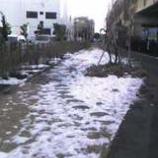 『消えない雪』の画像