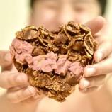 『親子のカルマと食の関係。ライトワーカーのためのヴィーガン道!〜食をみればその人の意識状態が分かる〜』の画像