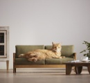 職人が本気で制作した「ネコ家具」  高価格も国内外から問い合わせ殺到