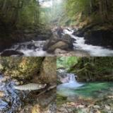 群馬県の渓流のサムネイル