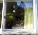 クマが就寝中の女子中学生の居室を狙い窓ガラス割る サッシ二重のため、けが無し 能代