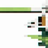 『【ポケモン剣盾】新ポケモン公開のバグは、あるポケモンのいたずらだった?』の画像