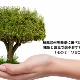 『植栽は何を基準に選べばいいのか。 独断と偏見で選ぶおすすめの植栽(その2)』の画像