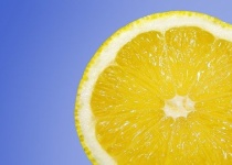 柑橘系で一つだけいらんもんあるよな・・・