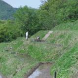 『千枚田田植え』の画像