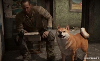 Fallout4 ENB Series v0.344