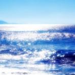 優しい海へ帰りたい