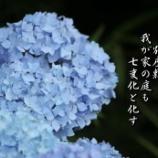 『七変化』の画像