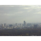 『明治神宮の森も』の画像