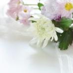 【衝撃】梅宮辰夫さん壮絶死、最期の言葉をお聞きください・・・