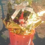 『石川県野々市町の宮子花園さんからいただいた嬉しいクリスマスプレゼント』の画像