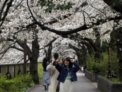 【新型コロナ】 日本人入国規制が192ヶ国に!!! ついに韓国を上回る・・・
