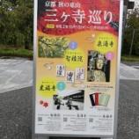 『京都秋の東山 三ヶ寺巡り ~2020年11月30日 【情報】』の画像