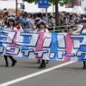 2016年横浜開港記念みなと祭国際仮装行列第64回ザよこはまパレード その41(ヨコハマカワイイパレード)
