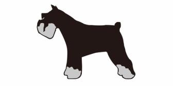 義姉がうちの犬を一目見て「なにこれ~変な犬ぅ~全然可愛くない~」だって。無茶苦茶ムカついたんだけど…