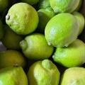 完全有機グリーン檸檬で美味しい酵素ジュースを作る♪