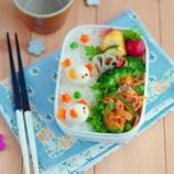 『キムチゴーヤチャンプル弁当とうずらの小鳥のキャラ弁』の画像