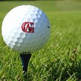 『スコア&飛距離アップ!ゴルフボールを芯で捉える打法まとめ』の画像