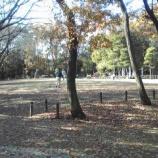 『落葉が積もる戸田市後谷公園』の画像