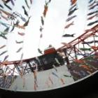 『魚眼レンズKAMLAN8mmF3.0による東京タワーと鯉のぼり 2019/05/08』の画像