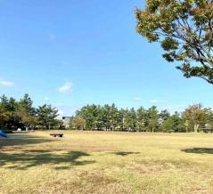 『鳥屋野潟公園』で朝ごはん?それともランチ?『鐘木地区エリア多目的広場』で『鳥屋野潟公園shumoku weekend park(パーク)』開催!10月25日。
