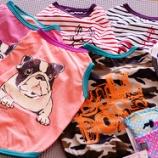 『フレブルちゃんのお洋服『Bulldoss』入荷しました!』の画像