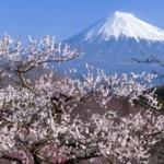 日本が世界一だと本気で誇れるものって何?