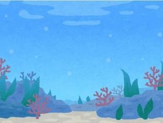 海水アクアリストあるある「購入した生体や用具代を妻に過小申告する」