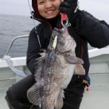 『4月 8日 釣果 スロージギング 詳細 クロソイ19匹 最大50UPのビックサイズ!!』の画像