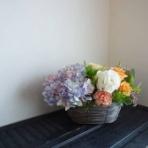 aqua wistaria project