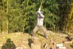 植物園で薪割るヒトおった!@かたのカンヴァス