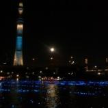 『東京ホタル』の画像
