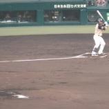 『甲子園~'14.6月交流戦❸阪神vs.日ハム』の画像