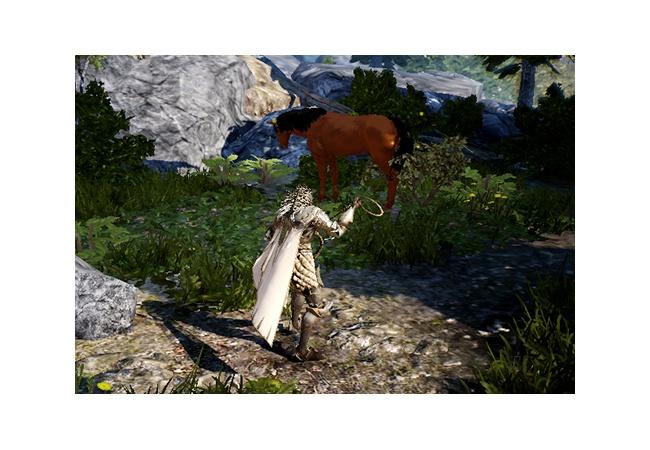 【黒い砂漠モバイル】馬を捕獲する方法・やり方
