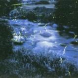 『広島の奥深くに湧く森の温泉 File No.74 君田温泉森の泉』の画像