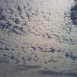 『うろこ雲☁』の画像