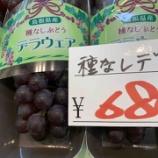 『島根県から種無しデラが入荷‼️』の画像