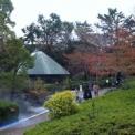 NIIGATA☆ひかりの公園