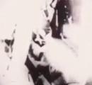 異星人?がタンカで運ばれる映像が公開された