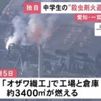 【悲報】中学生が蜂の巣に殺虫剤火炎放射したところ工場丸焼けに